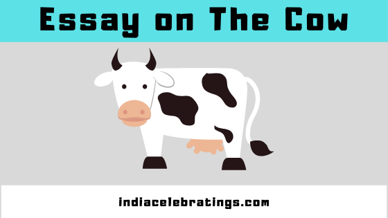 The Cow Essay In English, Hindi For Class 3 & 6 | 10 Lines on Cow
