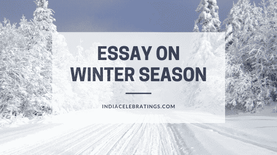 Essay on Winter Season For Students