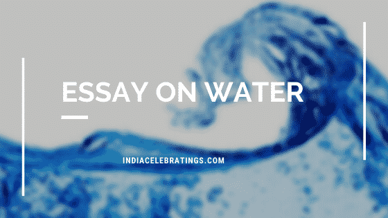 Essay On Water & Its Importance in Life