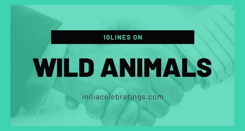 10 Lines On Wild Animals In English For Children